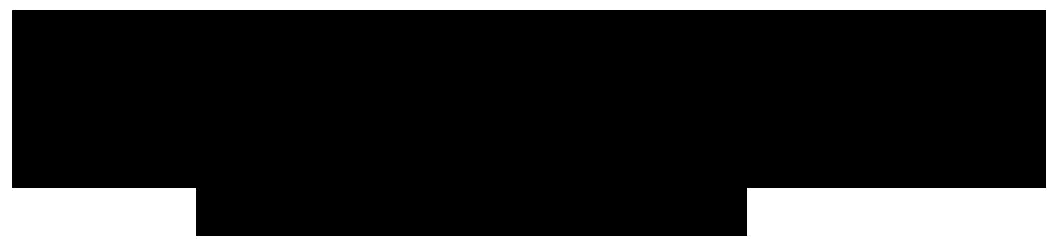 Haar & Kosmetik Iris Filz Logo
